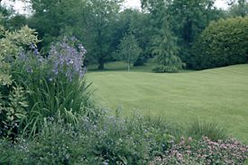 Aylesbury garden with lawn and woodland